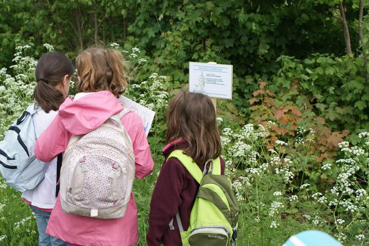 Enfants en promenade sur le Sentier nature