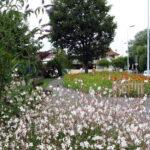 Fleurissement de la Ville