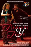 Soirée Flamenco y tapas