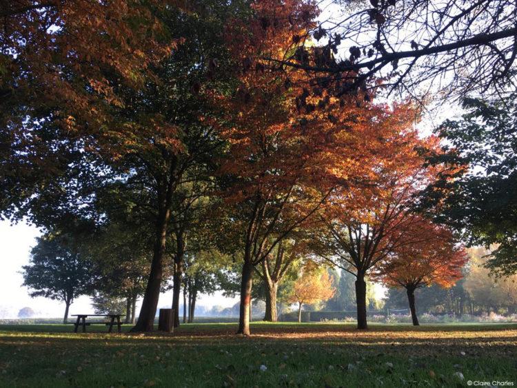 Le parc Corbière à l'heure d'hiver