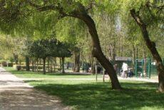 Salmonellose : abattage des volatiles au parc Corbière